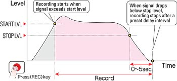 DIAGRAM  OF  AUTO  RECORD